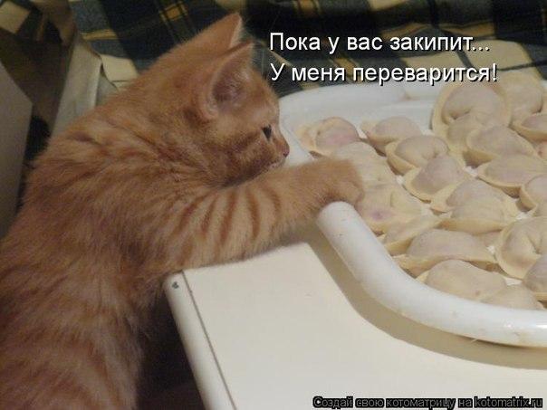 http://cs605321.vk.me/v605321115/286a/3lApLElK-go.jpg